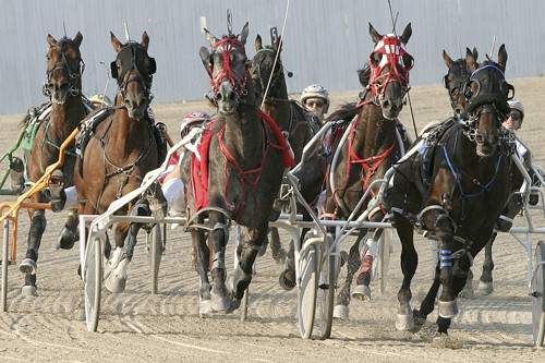 Hoosier Park Racing & Casino LAMC Trustee Sponsor